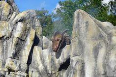 Mount Rushmore, Moose Art, Mountains, Nature, Travel, Animals, Animais, Naturaleza, Animales