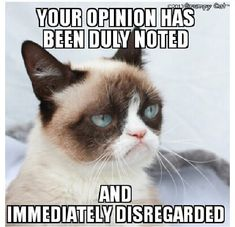 Your opinion has been duly noted. And immediately disregarded