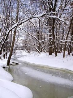 Pinterest country scenes | Country winter scene | Winter wonderland
