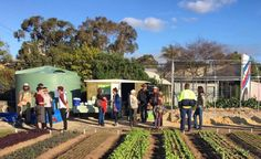 Using farming to eliminate social isolation