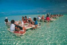 Bora Bora ocean restaurant  We will eat daily at a place like this