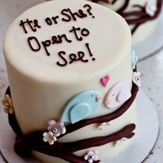 Have your doctor put the gender of the baby in an envelope, take it to a baker and they can put blue or pink food dye in the cake mix. Have a party with your closest friends and family and cut the cake with your hubby. - Click image to find more popular food & drink Pinterest pins