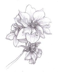 Larkspur Tattoo Birth Flower   Jessica- july - larkspur
