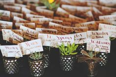 Escort cards placed in small succulent favors. Bouquets of Austin Barbara's Brides Diana Lott Photography Nature's Point Event Center