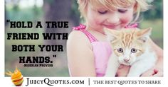 We have the best quotes about friendship. Find the perfect quotes to share with your friends and your best friend. We have picture quotes for each. Best Friend Quotes, Your Best Friend, Best Quotes, Best Friendship Quotes, Perfection Quotes, True Friends, Picture Quotes, Proverbs, Really Cool Stuff