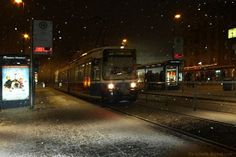 It's snowing! Photo by Volker Schenk -- National Geographic Your Shot