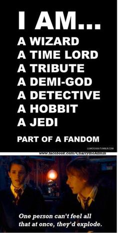 Oh my fandoms!  Wizard and Tribute over here.  I need to check out some of the other ones.