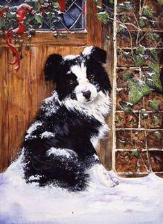 Border collie on the doorstep-watercolour-xmas card design