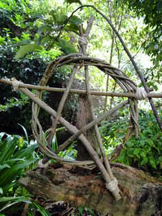 1000 Images About Witches Garden On Pinterest Witches