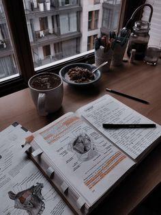 Study Space, Study Desk, Desk Space, College Motivation, Study Motivation, Student Studying, Student Life, College Aesthetic, Medicine Student