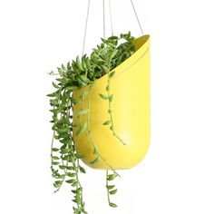 Hanging Planter- Mustard Wallter Living modern planter With a cut, painted plastic bottle?