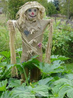 garden scarecrow ideas - Bing Images