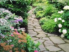 great side yard and garden pathway