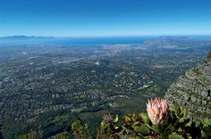 Cape Floral, South Africa.  Home to roughly 9,000 plant species, a third of them can be found nowhere else.  With the rise of temperature, and recent increase in wildfires, the beautiful diversity that's been created could be threatened.