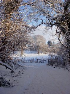 Cullybackey, 18th December 2010