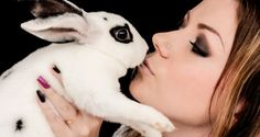 New Zealand just made cosmetic testing on animals illegal, punishable by 6 months in prison or a $125,000 fine  http://www.theplaidzebra.com/new-zealand-just-made-animal-testing-illegal-punishable-by-5-years-in-prison-or-a-500000-fine/