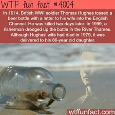 WTF Fun Facts is updated daily with interesting & funny random facts. We post about health, celebs/people, places, animals, history information and much more. New facts all day - every day! Wow Facts, Wtf Fun Facts, True Facts, Funny Facts, Random Facts, Crazy Facts, Random Stuff, Strange Facts, Funny History Facts