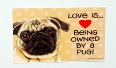 Love is Being Owned by a Pug Magnet by LadyPhoenixCreations, $4.00