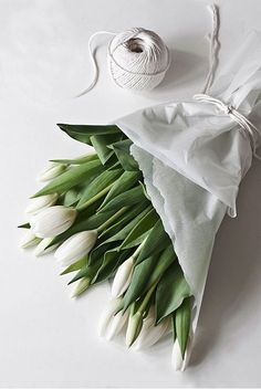 Classy bouquet of white tulips wrapped in white tissue paper with white ribbon My Flower, Fresh Flowers, Beautiful Flowers, Flower Dance, Cut Flowers, Spring Flowers, Simply Beautiful, Deco Floral, Arte Floral