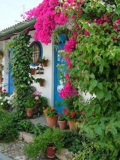 Gardened entrance, Cordoba, Spain