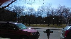 Michigan, University, Community College, Colleges