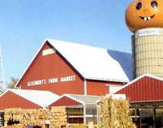 Goebbert's Pumpkin Farm; South Barrington, IL.  HA--used to buy pumpkins and produce here from work!