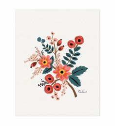 Rifle Paper Co. - Coral Botanical - Illustrated Art Print