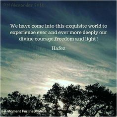 We have come into this exquisite world to experience ever and ever more deeply our divine courage,freedom and light! - Hafez