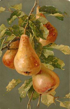 "PERAS. Catherine Klein (1861 - 1929) - ""La pintora de rosas""."