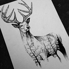 amazing art black and white cool deer drawing paper