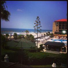 Guest view - Dan Accadia Pool and Beach Dan, Dolores Park, Social Media, Beach, Travel, Instagram, Viajes, Seaside, Social Networks