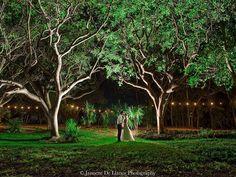 Florida Wedding Venues Top 2 Wedding Venues In Florida Keys
