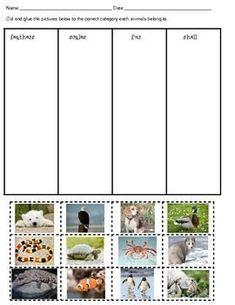 FREE.  Animal Characteristics Sorting Activity.