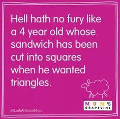 hell hath no fury like a 4 year old