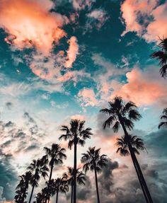 California. Pretty sky. Cotton candy sky. Palm trees.