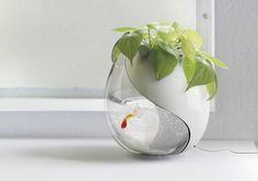 creative ying yang vases | Pour une décoration zen et nature, cet objet design , l' aquarium ...