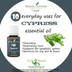 Young Living Essential Oils: Cypress Myrrh Essential Oil, Cypress Essential Oil, Grapefruit Essential Oil, Natural Essential Oils, Essential Oil Blends, Cypress Oil, Dr. Oz, Yl Oils, Doterra Oils