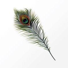 tatouage plume de paon 14703673231556