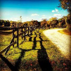 I giorni di #Pasqua possono essere un momento importantissimo per portare la tua #famiglia sul sentiero delle #bellezze e dei #sapori che il #territorio #rurale italiano offre.   Scegliere le aziende #agroalimentari italiane per passare le vacanze di #Pasqua o acquistare prodotti di #qualità è un investimento sul #benessere della persona e sul futuro dell'#agricoltura.   #bioeticonet è dalla parte di chi imbocca questo #sentiero.  Un sentiero sempre più battuto ma bisognoso di guide…