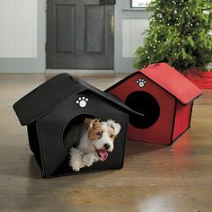 Great gift idea for a pet!