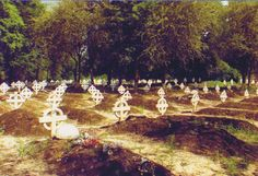 32 Battalion graveyard, the forgotten heroes. Military Life, Military History, Defence Force, African History, Special Forces, Troops, Dolores Park, South Africa, World