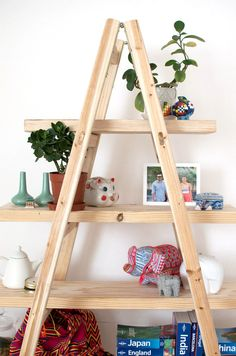Make a quick set of shelves using a ladder www.apairandasparediy.com