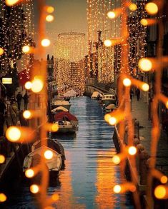 Rotterdam, Netherlands at night Life Is Beautiful, Beautiful Places, Beautiful Pictures, Amazing Places, Christmas Town, Town And Country, Venice Italy, Wallpaper Backgrounds, Wallpapers