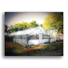 Willow Lake Greenhouse