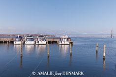 Amalie loves Denmark - Ferienhausurlaub auf Fünen, Middelfart