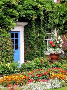 A hidden bold colored front door among the lush green gardens - Typical English Cottage
