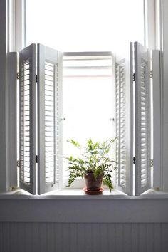 great cafe style, folding interior shutters