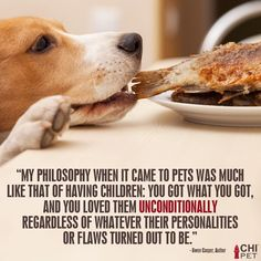 Love them unconditionally ♥ #pet #quotes #dog - True!!!!  And I am happy to say .. I have some with quirky personalities!!