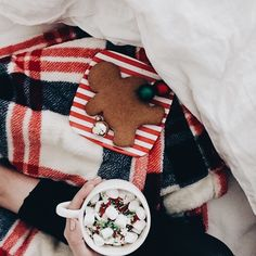 Christmas and holiday aesthetic   plaid blanket, hot chocolate, gingerbread cookie