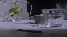 Medios de cultivo para germinacion de semillas de orquidea [medium for orchid seed germination] - YouTube